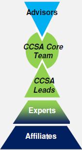 CCSA Structure