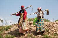 rwandan farmers