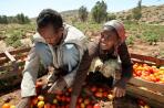 Ethiopia ag