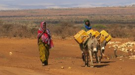 afr-moving-away-from-humanitarian-appeals-to-managing-droughts-in-ethiopia-feature-780x439