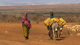 afr-moving-away-from-humanitarian-appeals-to-managing-droughts-in-ethiopia-feature-780x439.jpg