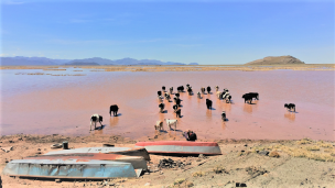 Dried-lake-Bolivia