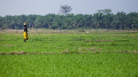 20120903-burundi-farhat-9869