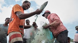 madagascar-balancing-conservation-and-exploitation-of-fisheries-resources-photo-01